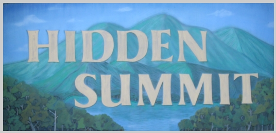 Hidden Summit home lots and homes in Hiawassee, GA